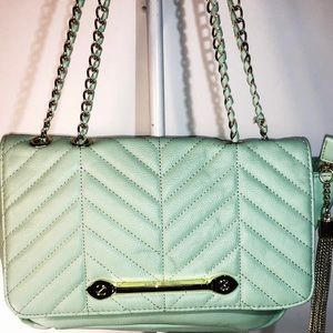 Steve Madden ~ Seafoam Green & Gold Crossbody